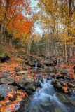 Autumn Scene at Beaver Creek, New Hampshire Photographic Print by Vincent James