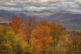 Wild Fall Color, White Mountain New Hampshire Photographic Print by Vincent James