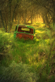 Old Pickup Truck in Woods, Kern County California Photographic Print by Vincent James