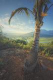 Hanalei Landscape, Kauai Hawaii Photographic Print by Vincent James
