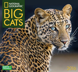 Big Cats  - 2016 Calendar Calendars