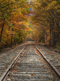 Autumn Tracks, New Hampshire Metal Print by Vincent James