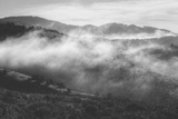 Morning Mist in the Hills of Point Reyes, California Photographic Print by Vincent James