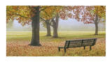 Thoughtful Spot Giclee Print by Donald Satterlee
