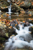 Beaver Creek Cascades, New Hampshire Photographic Print by Vincent James