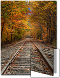 Autumn Tracks, New Hampshire Posters by Vincent James
