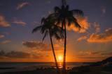 Palm Trees and Setting Sun, Kauai Hawaii Photographic Print by Vincent James