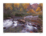 Autumn Color 1 Giclee Print by Ken Bremer