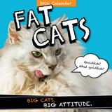 Fat Cats  - 2016 Calendar Calendars