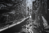 Trail to Flume Gorge, White Mountain New Hampshire Photographic Print by Vincent James