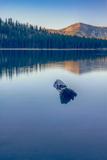 Peaceful Reflections at Tenaya Lake, Yosemite California Photographic Print by Vincent James