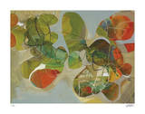 Spring Garden 1 Giclee Print by Liz Barber