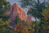 Watchman and Fall Frame, Zion Southwest Utah Photographic Print by Vincent James