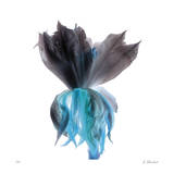 Night Bloom 2 Giclee Print by Kate Blacklock
