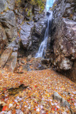 Autumn Leaves at Silver Cascades, New Hampshire Photographic Print by Vincent James