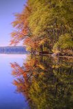 Autumn Pond Reflections, New Hampshire Photographic Print by Vincent James