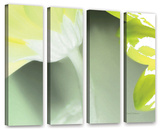 Herb Dickinson's Gerber Time Ii, 4 Piece Gallery-Wrapped Canvas Set Prints by Herb Dickinson
