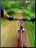 Mountain Bike Trail Riding Mounted Photo by Chuck Haney