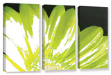 Herb Dickinson's Gerber Time Iii, 3 Piece Gallery-Wrapped Canvas Set Posters by Herb Dickinson