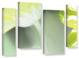 Herb Dickinson's Gerber Time Ii, 4 Piece Gallery-Wrapped Canvas Staggered Set Prints by Herb Dickinson
