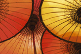 Oriental Umbrellas Giclee Print by Peter Adams