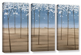 Herb Dickinson's Spring Dream, 3 Piece Gallery-Wrapped Canvas Set Gallery Wrapped Canvas Set by Herb Dickinson