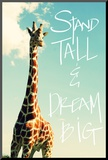 Stand Tall Mounted Print by Susan Bryant
