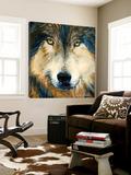 Regard inquiet du loup Art by Sylvia Audet