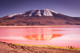 Mountains of Bolivia, Altiplano Photographic Print by Vladimir Krupenkin