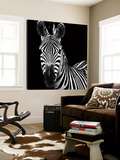 Zebra II Prints by Debra Van Swearingen