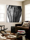 Elephant I Poster von Debra Van Swearingen