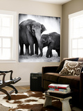 Elephant III Art by Debra Van Swearingen