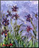 Irises (detail) Mounted Print by Claude Monet