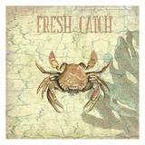 Fresh Catch Posters by Sheldon Lewis