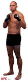 UFC - Travis Browne Lifesize Standup Cardboard Cutouts