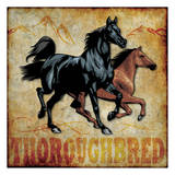 Thoroughbred Poster by Melody Hogan