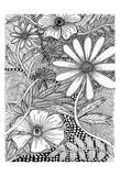 Wild Daisys Prints by Pam Varacek