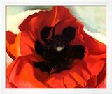 Poppy Posters by Georgia O'Keeffe