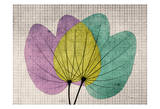 SoHo Orchid Print by Albert Koetsier