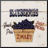 Blueberries Just Picked Mounted Print by David Carter Brown