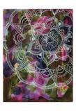Radiant Lotus Posters by Pam Varacek