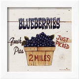 Blueberries Just Picked Posters by David Carter Brown