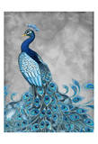 Peacock on Grey 1 Art by Nicole Tamarin