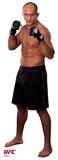 UFC - Junior Dos Santos Lifesize Standup Cardboard Cutouts