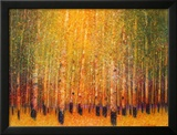 Aspen Glow Prints by Gary Max Collins