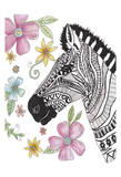 Tribal Zebra Portrait Art by Pam Varacek