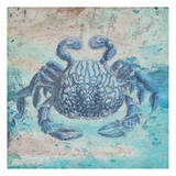 Sea Crab Poster by Sheldon Lewis