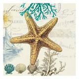 Coastal Teal 2 Prints by Elizabeth Jordan