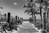 Boardwalk on the Beach - Key West - Florida Fotografisk tryk af Philippe Hugonnard
