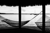 The Hammocks - Florida Photographic Print by Philippe Hugonnard